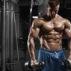 Build Muscle Mass