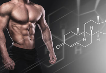 Testosterone Help Bodybuilding